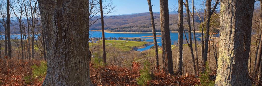 Norris Lake Lots